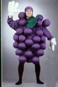 Where to rent GRAPES  2 COSTUME, LG in St. Helens OR