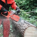 Where to rent CHAIN SAW, 32  GAS in St. Helens OR