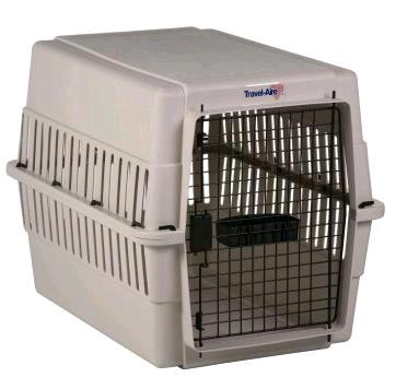 Where to find PET CARRIER, MEDIUM in St. Helens